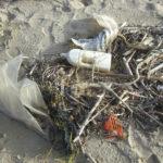 sacs plastiques sur une plage, la vente en vrac permettrait de lutter contre ce fléau