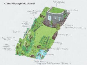 Croquis dessin jardin écolgique mare permaculture composteur brf