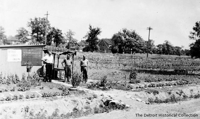 Agriculture urbaine à Détroit au début du XXe siècle. Jardinier devant une cabane de jardin, entourée de parcelles de légumes
