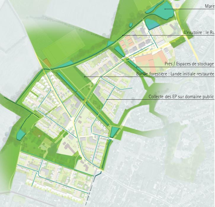 Vue de la trame verte et bleue de l'écoquartier de Guérande en Loire-Atlantique, département 44