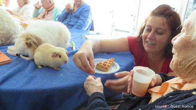 Séance de médiation animale à l'EHPAD de Paimbœuf en Loire-Atlantique. Une animatrice accompagne une résidente pour nourrir un hamster