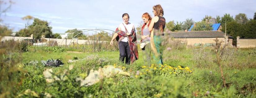 Terres agricoles louées par la mairie de Rennes, 3 personnes dans un jardin. Arrière plan : serres maraîchères et bâtiments anciens.
