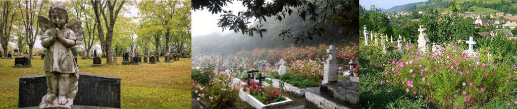 Écologie au cimetière à travers le monde : cimetière parc au Canada (tombes sous des arbres), cimetières envahies de fleurs et de plantes en Roumanie et à la Réunion