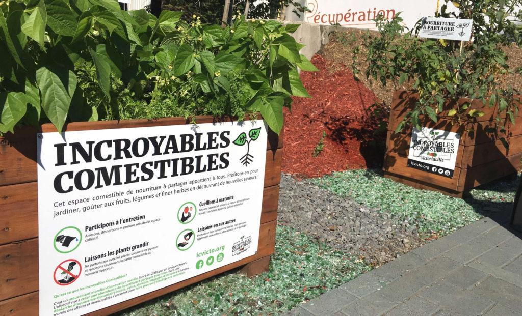 Bacs à jardin en ville, avec légumes, une économie collaborative alimentaire !