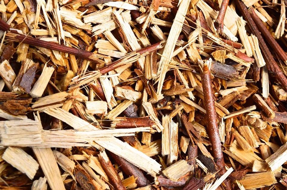 Vue de plaquettes de bois en gros plan