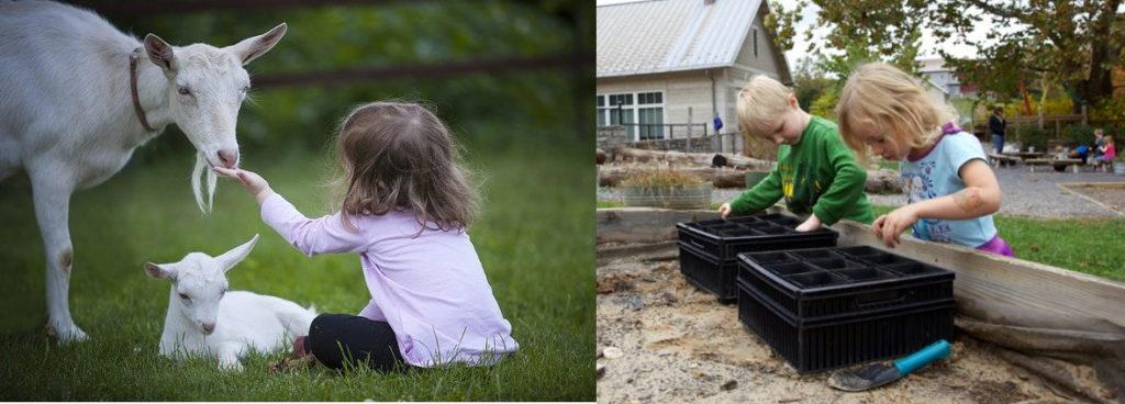 Photo de gauche : ferme pédagogique, fillette (enfant) assise dans l'herbe et tendant sa main à une chèvre, chevreau allongé. À droite : deux enfants remplissent des godets de terreau dans une jardinière en hauteur, dans une cour d'école (jardin pédagogique)