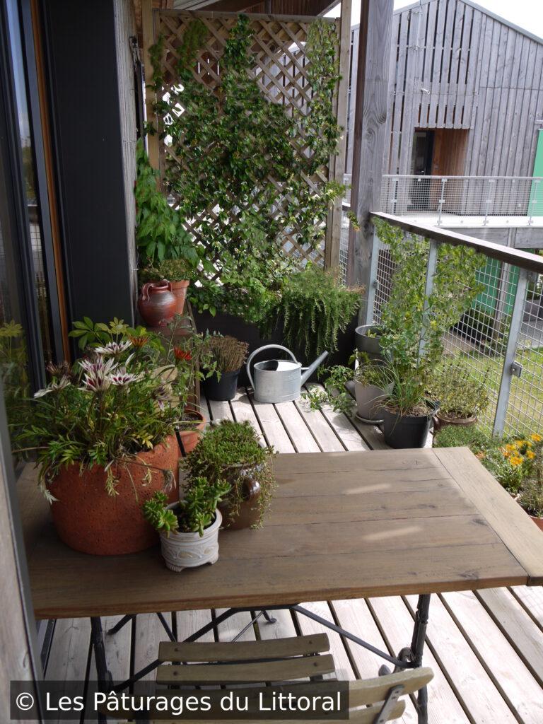 Balcon végétalisé, terrasse végétalisée (vue du travail d'un paysagiste sur Saint-Nazaire) : 'une terrasse en bois avec bac à plantes, plantes grimpantes sur treille dans le fond, tomates, aromatiques, ficoïdes en pots, table en bois et fer forgé au premier plan avec pot de fleurs et sedum