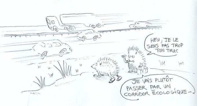 """Dessin humoristique de deux hérissons au bord d'une autoroute : l'un dans une position de sprinter prêt à traverser, l'autre dit """"je ne le sens pas trop ton truc, je vais plutôt passer par un corridor écologique"""""""